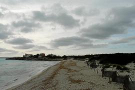 Campos ofrece al Govern tres espacios para dinamizar el Parc Natural des Trenc