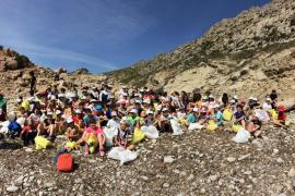 Un centenar de escolares de Pollença retira residuos en Cala Bóquer