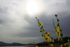 El fin de semana llega con calor y escasa probabilidad de lluvia