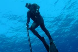 La prohibición de la pesca submarina en la Reserva de Llevant crispa al sector