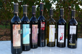 Vins Can Coleto
