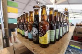 Ambar y Estrella Galicia, las mejores cervezas según los consumidores
