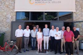 El Consell elabora un reglamento para usar la marca Serra de Tramuntana en productos agroalimentarios