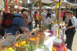 10ª Fira i jornades de la Taronja en Sóller 2016