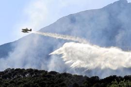 Estabilizado el incendio en Puigpunyent