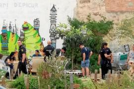 Registro en el huerto urbano de Palma