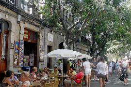 Valldemossa prohíbe por primera vez regar y llenar piscinas con agua de la red