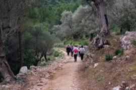 Banyalbufar abre al público el camino antiguo de Planícia y el del Rafal