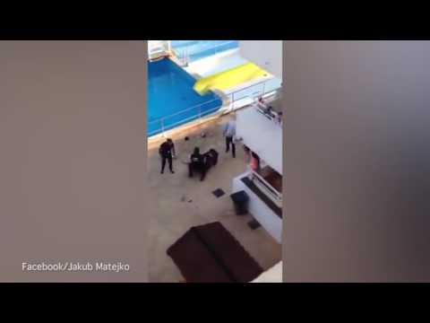 Pelea entre una pareja de turistas y los vigilantes de seguridad en un hotel de Magaluf