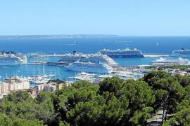 El PP propone al Ajuntament de Calvià que el municipio se declare 'amigo' del turismo crucerista