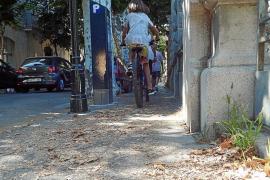 Las quejas por la suciedad en las calles de Sóller obligan al Pacte a plantearse medidas