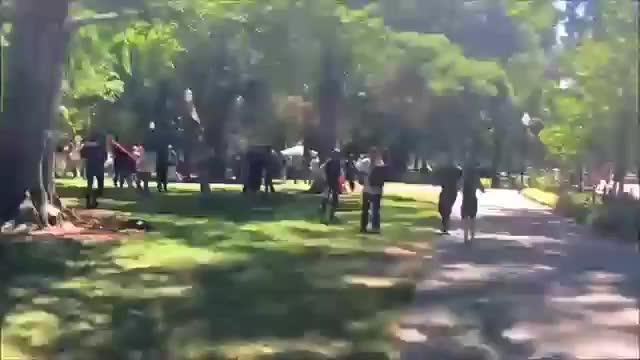 Múltiples apuñalados durante un mitin en Sacramento