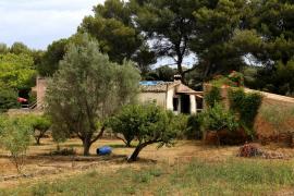La mujer quemada con gasolina por su pareja en Alcúdia continúa «muy grave»
