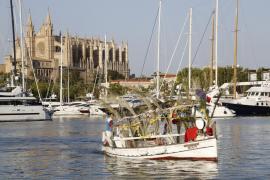 Palma es una de las ciudades más caras de España para ir de vacaciones