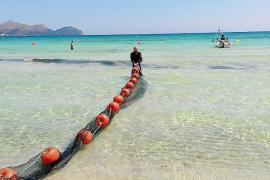 Playas sin medusas