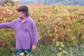 Tomeu Isern guía en Palma una cata de vinos de Estellencs