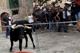 Cataluña protege los 'correbous' dos meses después de prohibir las corridas de toros