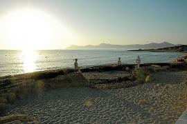 Los puertos de alga marina de Joan Bennàssar