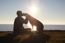 Un hombre se lleva a su perra con cáncer a un viaje épico de despedida