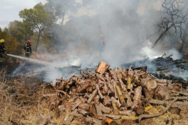 Extinguido un incendio en Llucmajor tras quemar 0,025 hectáreas de masa forestal