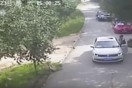Un tigre mata a una mujer en un safari de Pekín