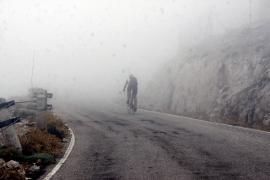 Colosos en la niebla