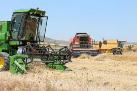 El Govern recuperará los aspectos más polémicos de la ley agraria de Company