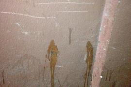 Catorce denuncias por orinar en la calle en la primera 'revetla' de Artà