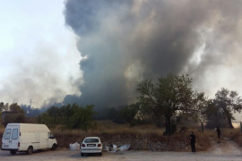 Un detenido por su posible relación con los incendios en Palma