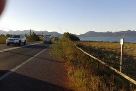 La maleza cubre el carril bici de la carretera Alcudia-Puerto de Pollença