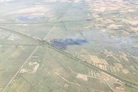 El Ibanat declara controlado el incendio de s'Albufera tras quemar 7,13 hectáreas de cañizo