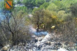 Controlado un incendio de nivel 0 en Cala Domingos