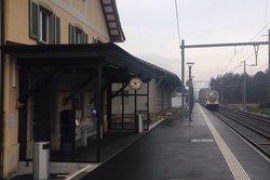 Ataque con un cuchillo y líquido inflamable a los pasajeros de un tren en Suiza