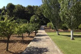 Los jardines de Marivent no se podrán visitar ni en Semana Santa ni en verano