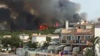 El incendio de sa Canova está estabilizado tras quemar 23 hectáreas de pinar