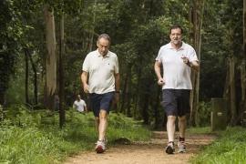 Rajoy pide sentido común porque estar sin Gobierno es una «situación absurda»