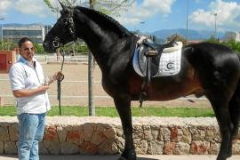 La Guardia Civil se incauta de 16 caballos purasangre del clan de 'Los Benabad'