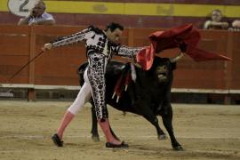 El Senado rechaza la moción del PP para que los toros sean bien de interés cultural