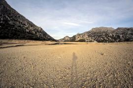 El 40% de los municipios de Balears, Palma incluida, están en alerta por sequía