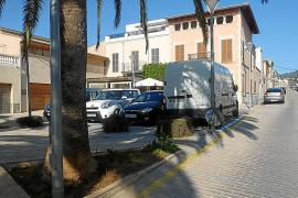 Plan de choque en Vilafranca para controlar la plaga de ratas