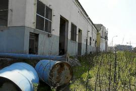 El Ajuntament de Manacor no puede actuar en el edificio de Majorica hasta su descontaminación