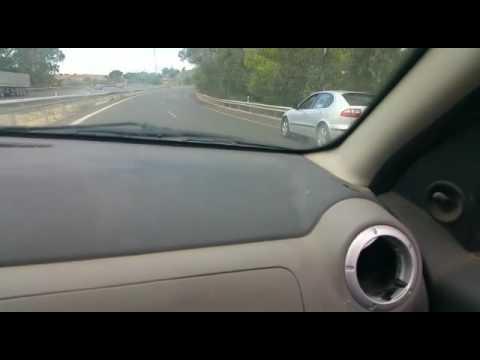 Un perro abandonado corre por la autopista en busca de sus dueños