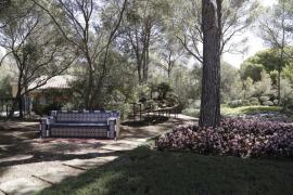 Urbanismo autoriza el inicio de los trabajos para poder visitar los jardines de Marivent