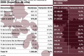 El Govern dice que la promoción del vino será «eje central» en la feria de Londres