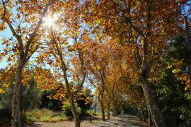 El otoño ha comenzado a las 16.21 horas de este jueves