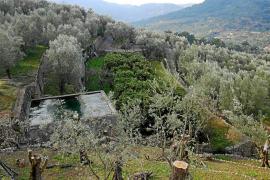 Consell y Govern acuerdan colaborar para la mejora del paisaje rural de la Tramuntana