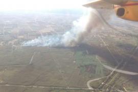 Incendio en las inmediaciones del Parque Natural de s'Albufera