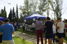 Todo a punto para la nueva edición de la Mostra de Cuines de Calvià