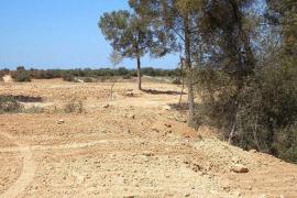 Medi Ambient tiene abierto desde 2015 un expediente sancionador por vertidos en Son Olivaret