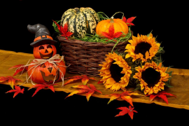 Bases del V Concurso de disfraces de Halloween